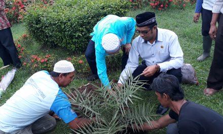 Pohon Kurma Untuk Attaqwa dari Ketua Masjid Al Barkah Bekasi